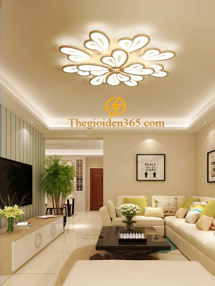 Đèn ốp trần hiện đại trang trí nội thất cao cấp D880 TL-TT23-12