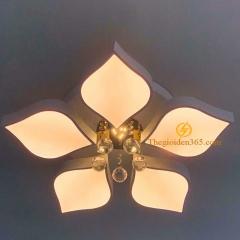 Đèn mâm ốp trần Led hiện đại 5 cánh cao cấp TL-B1-05