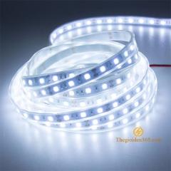 LED dây 12v chống nước cuộn 5m 60 mắt SMD5050 trang trí nội ngoại thất TLD-12V-60P