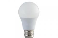 Bóng đèn LED BULB 3W rang đông