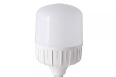 Bóng đèn LED BULB 40W rang đông