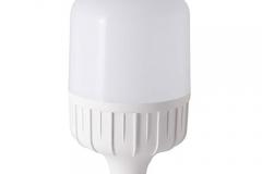 Bóng đèn LED BULB 50W rang đông